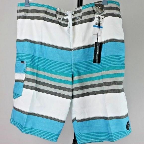 O'Neill Other - O'Neill Men's Santa Cruz Stripe Boardshort